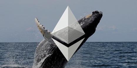 افزایش تعداد نهنگ های اتریوم همزمان با اصلاح قیمت این رمز ارز